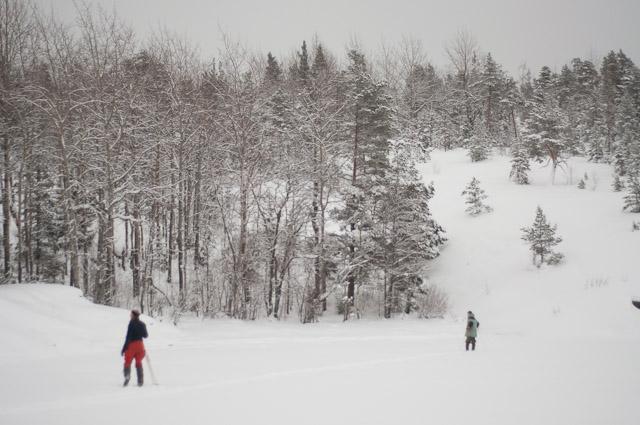 Ладожские шхеры зимой