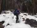 Курумник в лесу над оз. Фролиха