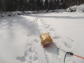Лед на Пр. Фролихе вблизи устья