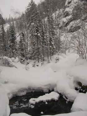 Водяной провал посреди леса