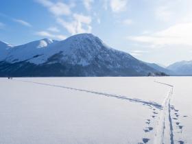 Лыжня на Левую Фролиху, налево - наша свежая