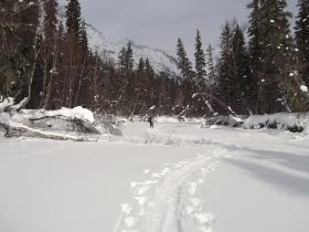 Самые низовья Правой Фролихи - здесь она ещё замёрзшая